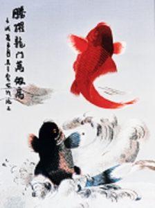 Springende Kois - Himmlisches Glueck